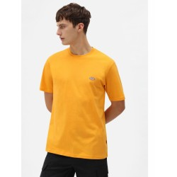 DICKIES TEE MAPLETON - CADNIUM YELLOW